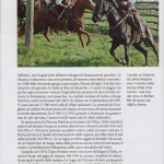Articolo National Geographic-09