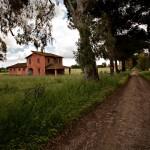 Casa colonica agro Pontino - foto Mario Aielli