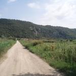 Pontinia (LT), scorcio zona lacustre dei Gricilli