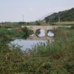 Pontinia (LT),fontana di muro