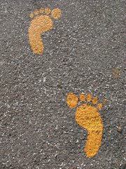 orme marciapiede piedibus