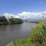 Pontinia (LT), scorcio di un'ansa del fiume Ufente