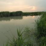Pontinia (LT), paesaggio della campagna